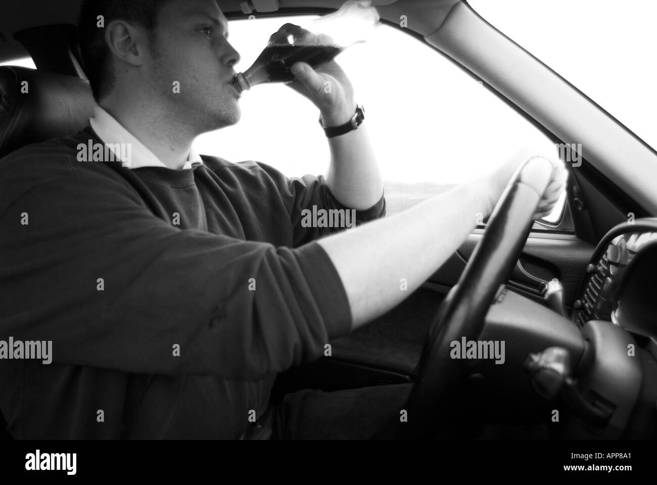 Distracted Car Driver Drinking Soft Drink Drunk Beer At The Wheel Stock Photo Alamy