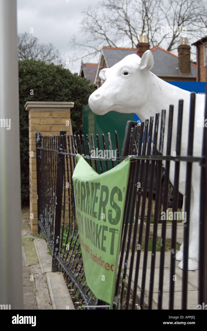 Head of a white cow statue leans over the railings at farmers' city market, a shop in hampton hill, middlesex, near - Stock Image