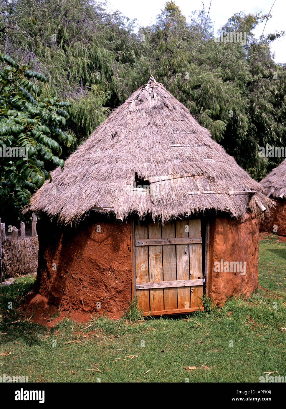 Small round thatched mud hut in Perth zoological garden Western Australia Stock Photo