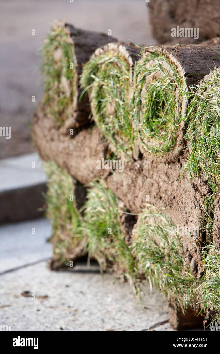 close up of stacks of rolls of turf Belfast Northern Ireland UK vertical - Stock Image