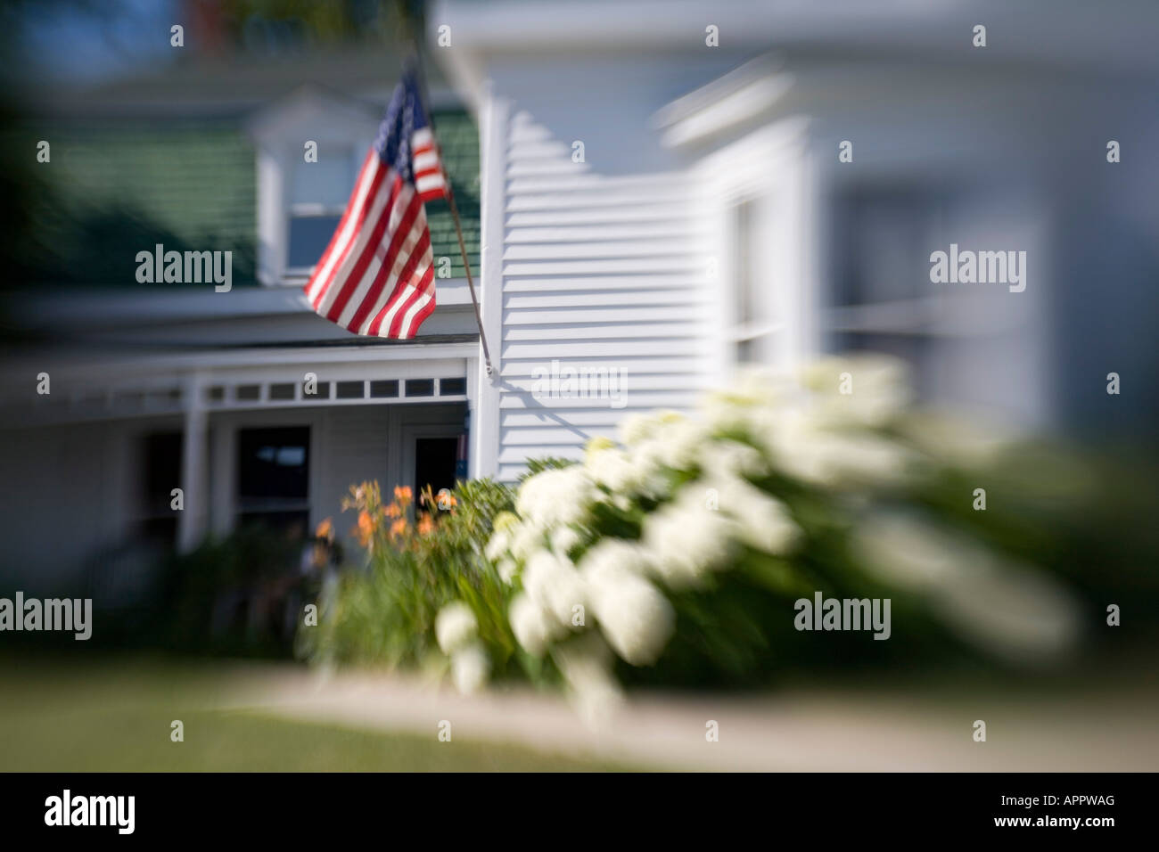 Blurry image of white clapboard house Maine USA New England with American flag and hydrangea flowers - Stock Image