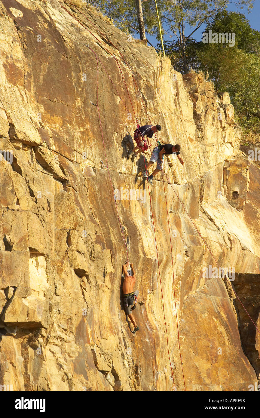 Rock Climbing by Brisbane River Brisbane Queensland Australia - Stock Image