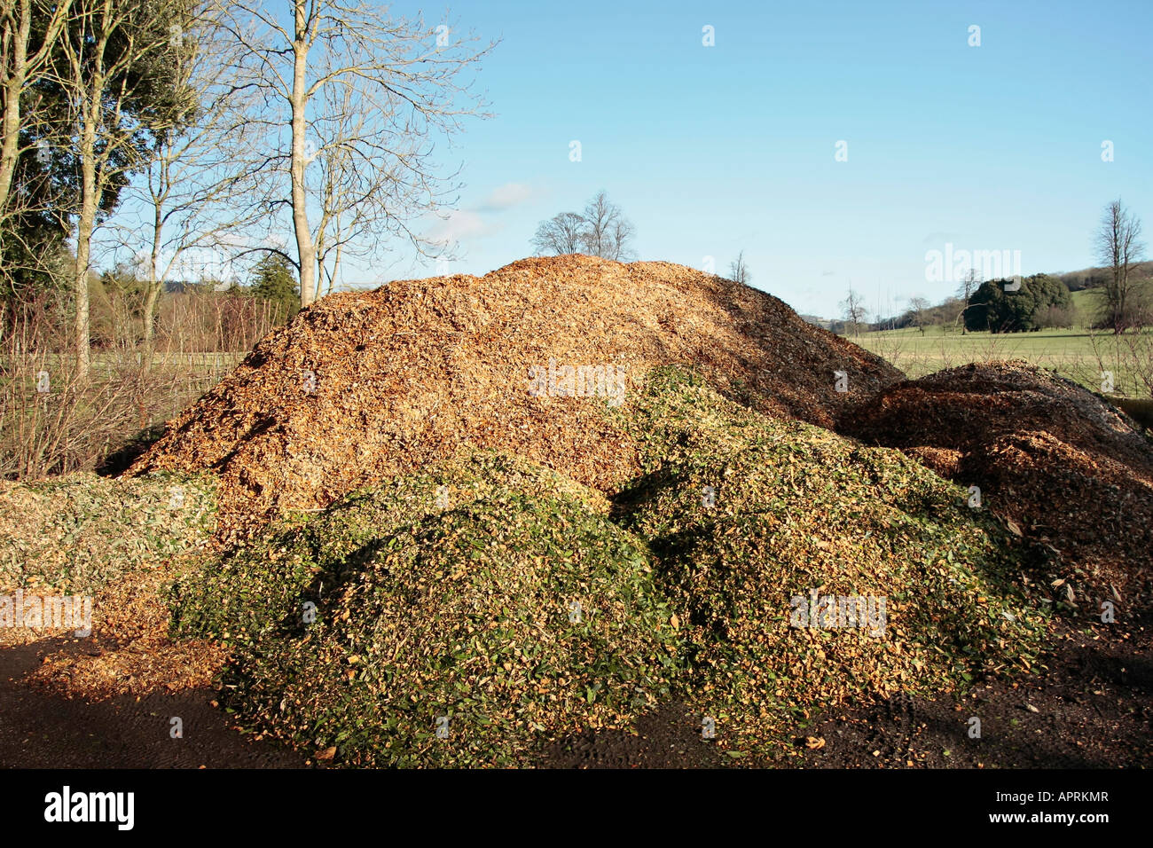 Compost heap made from shredded bark and hedge clippings - Stock Image