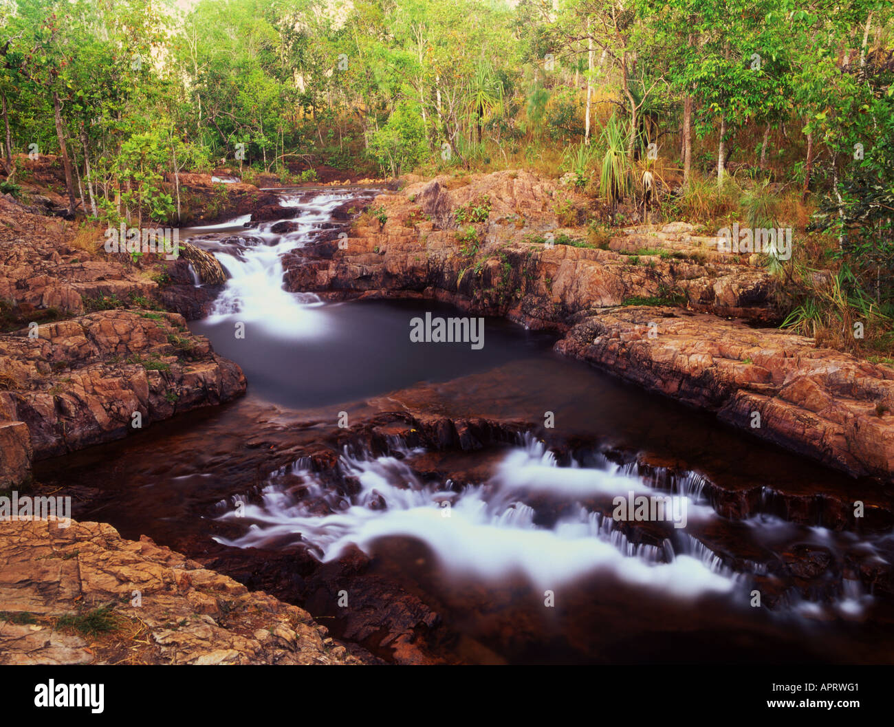 Buley Rockhole in Litchfield National Park Northern Territory Australia - Stock Image