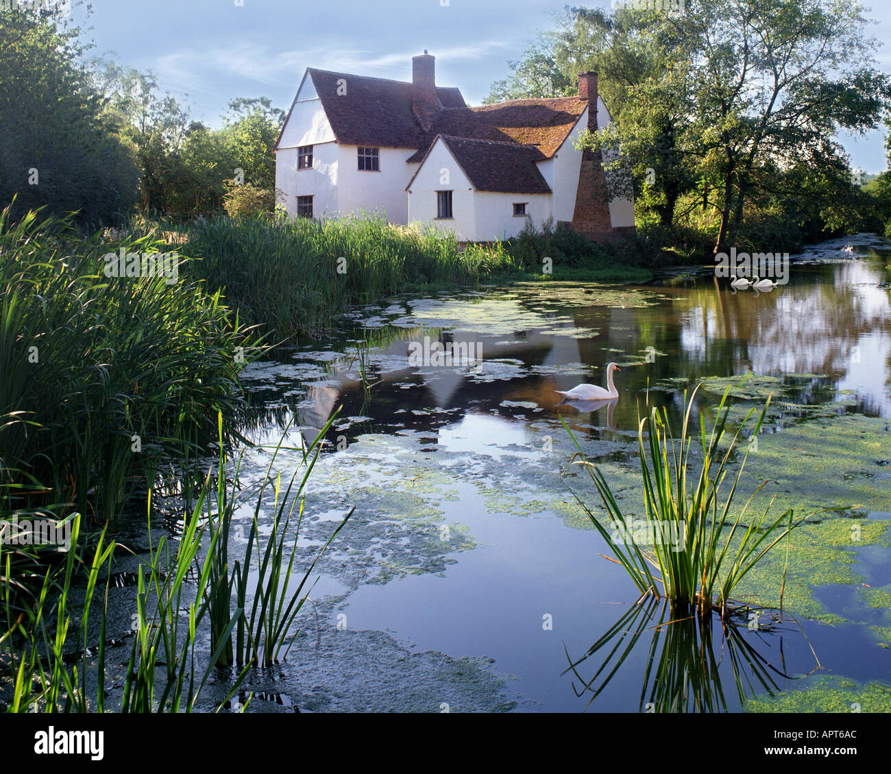 GB - SUFFOLK: Willy Lotts Cottage near Manningtree - Stock Image