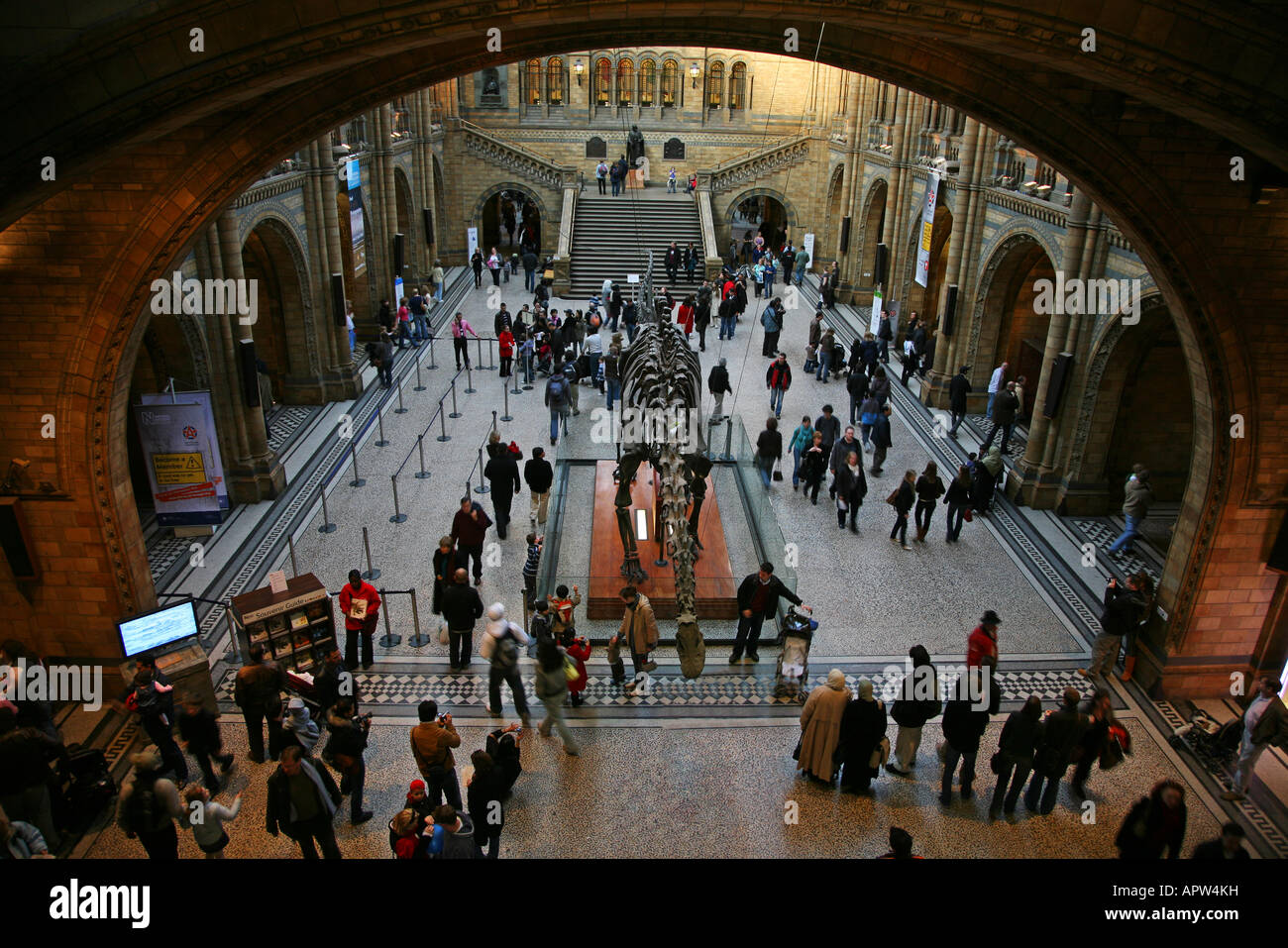 Natural History Museum london tourist attraction - Stock Image