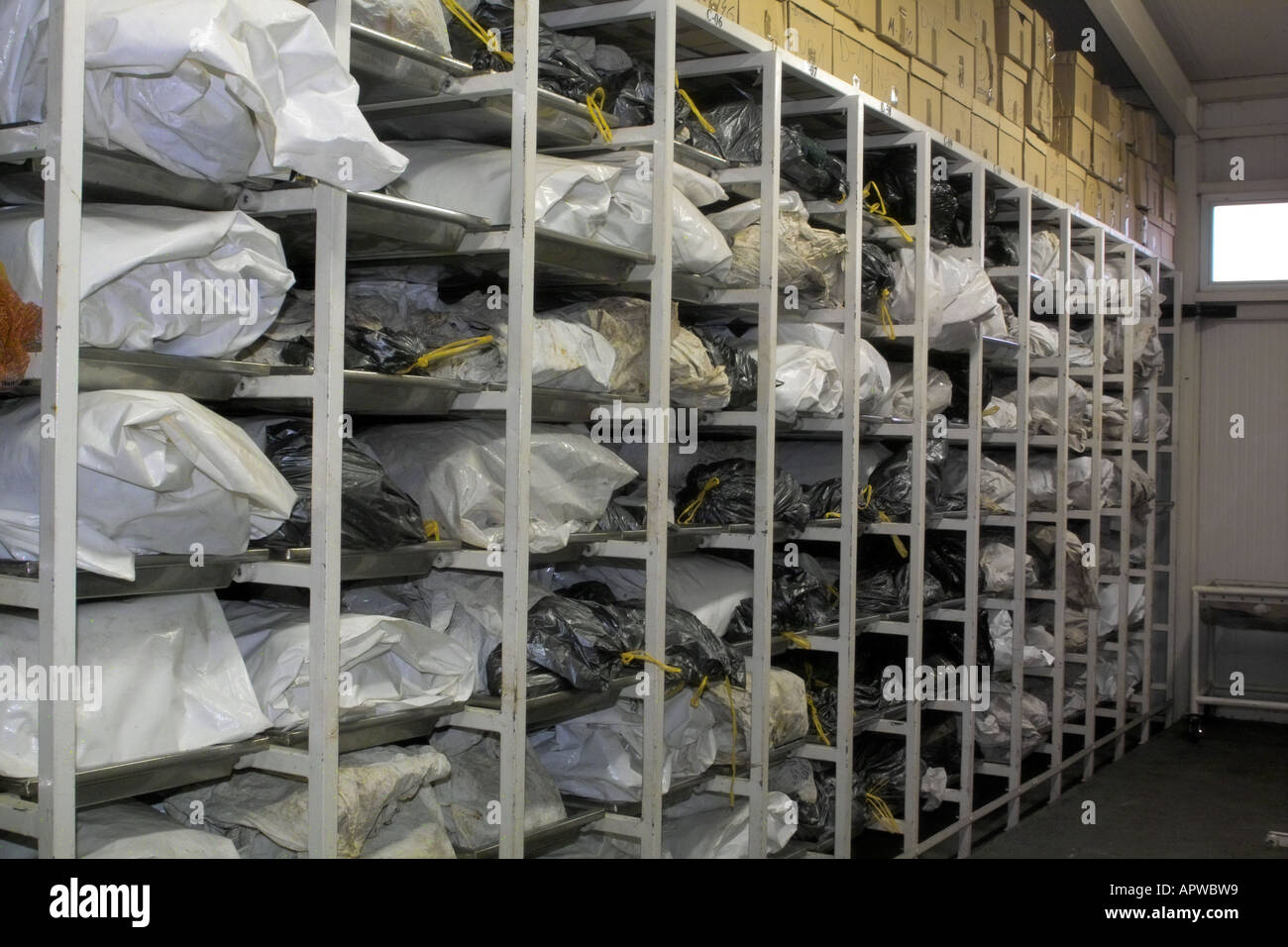 Body bags at the International Commission for Missing Persons Bosnia Herzegovina - Stock Image