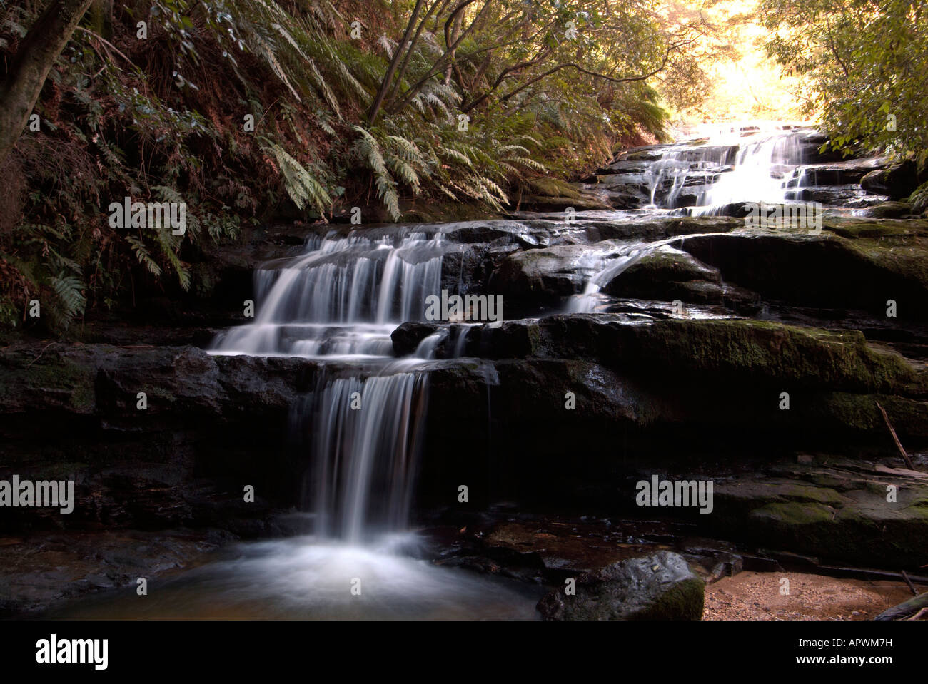 Waterfall called Leura cascades falls among the trees and ferns in the Blue Mountains World Heritage Park Australia Stock Photo