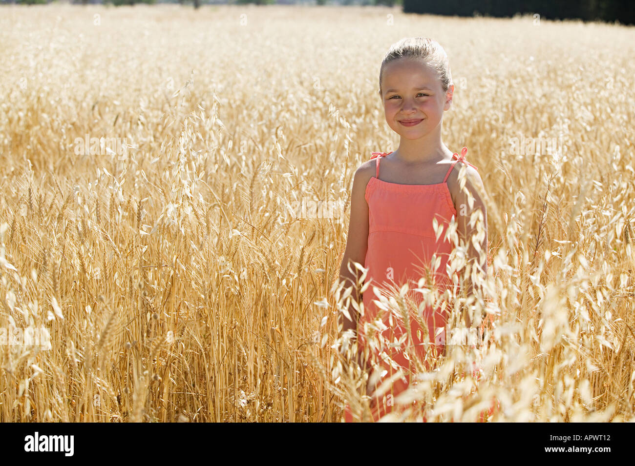 Girl in a field of wheat Stock Photo
