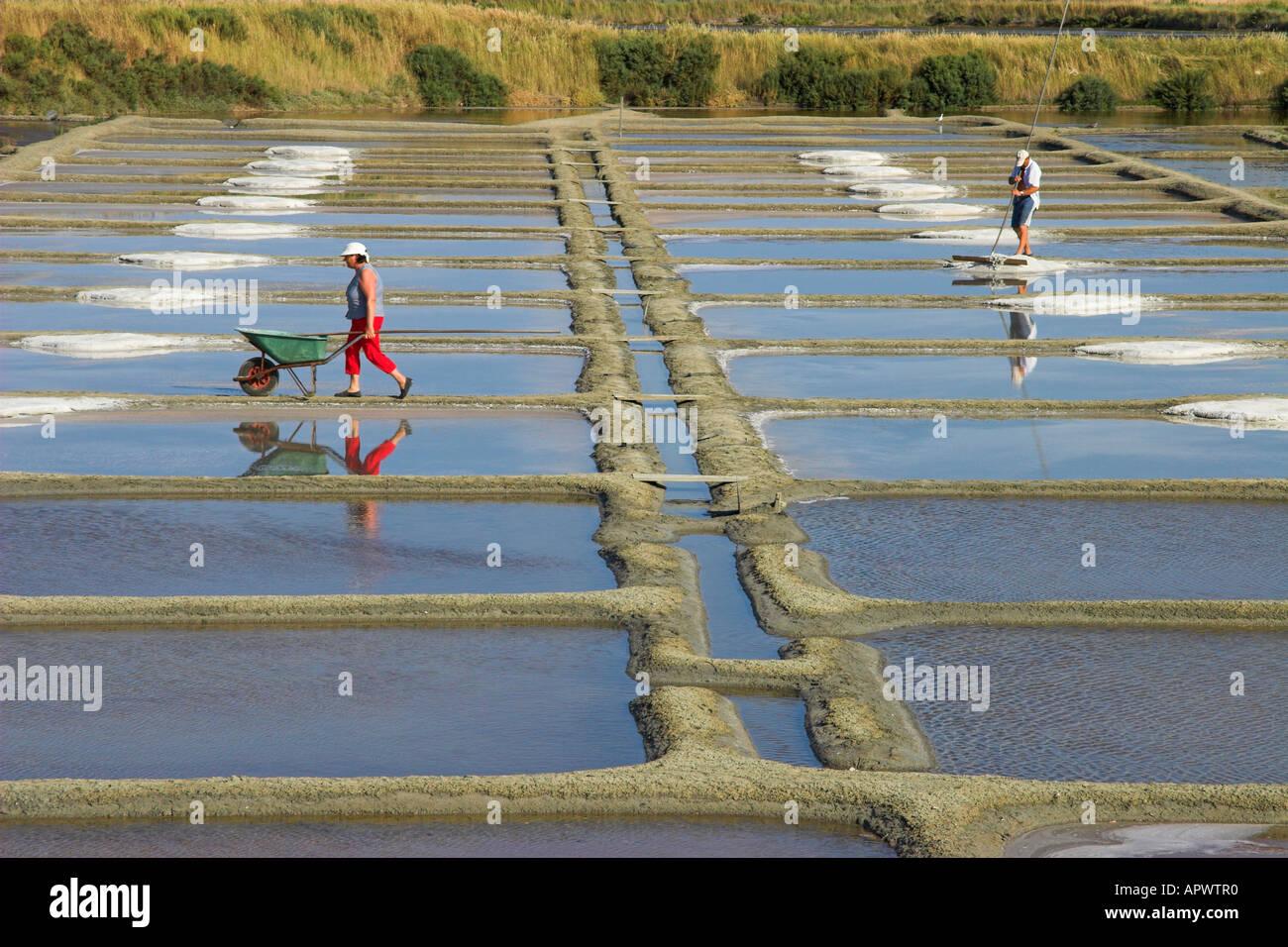 Collecting sea salt in the salt pans (Marais Salants de Guérande), Brittany, France Stock Photo
