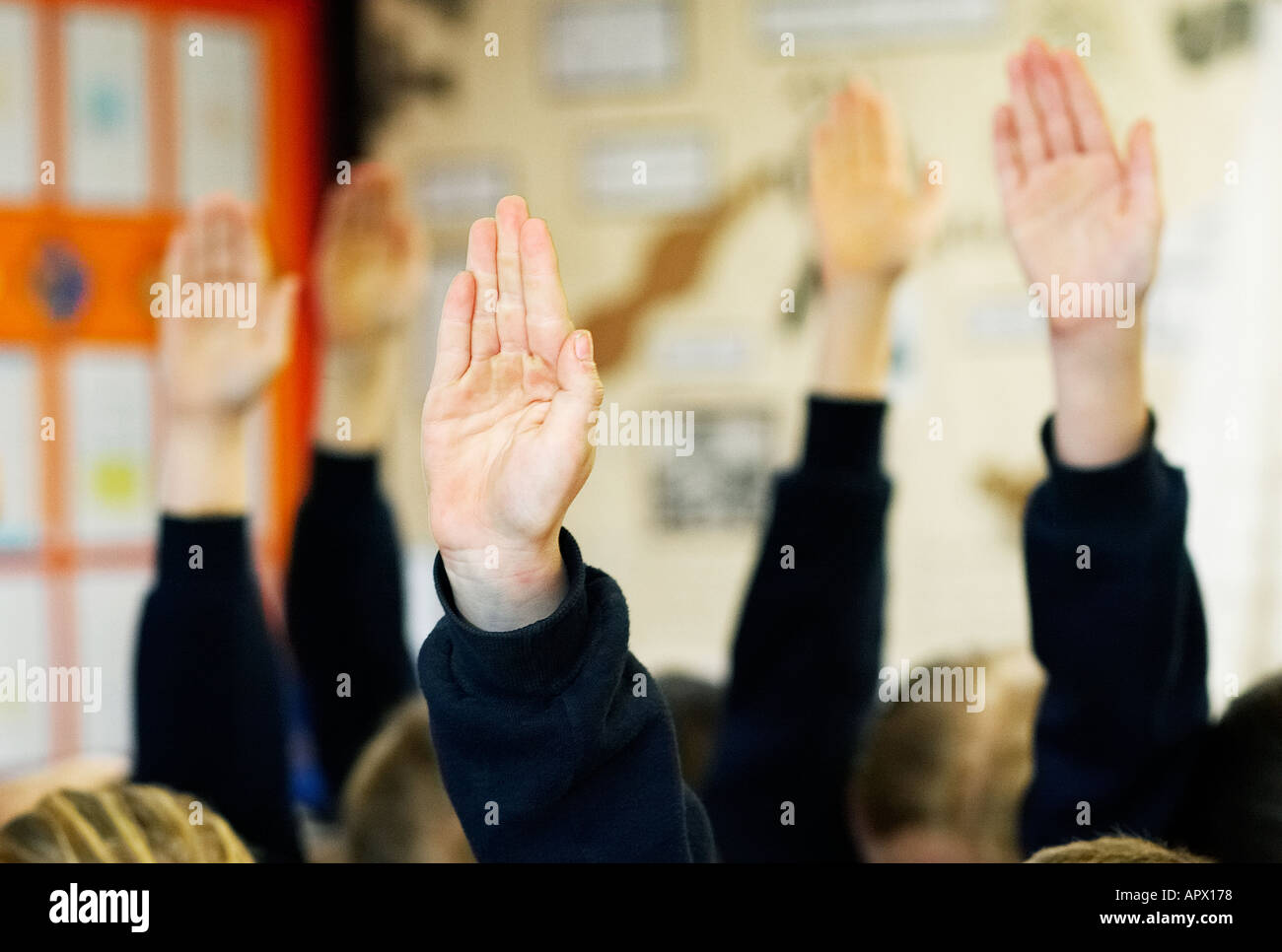 School children with hands up in the air wanting to answer a question - Stock Image
