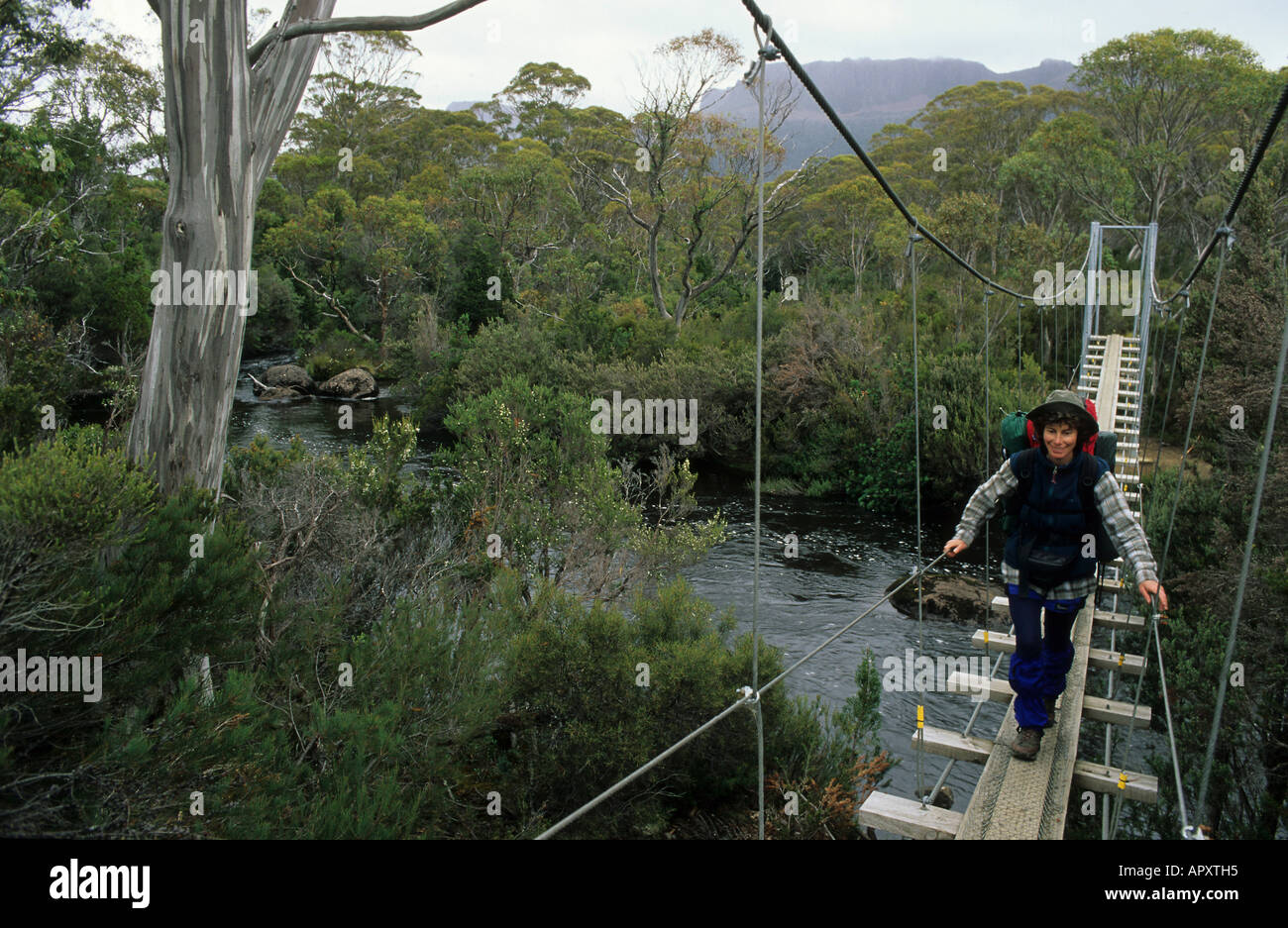 Bridge crossing, Cradle Mountain National Park, Australia, Tasmania, woman crossing Narcissus River on swing bridge, Overland Tr - Stock Image