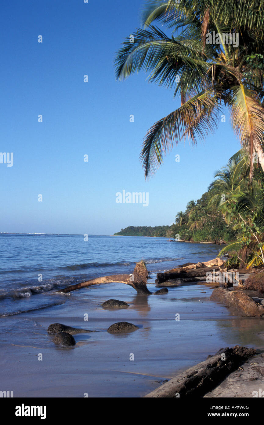 the-caribbean-coastline-in-cahuita-natio