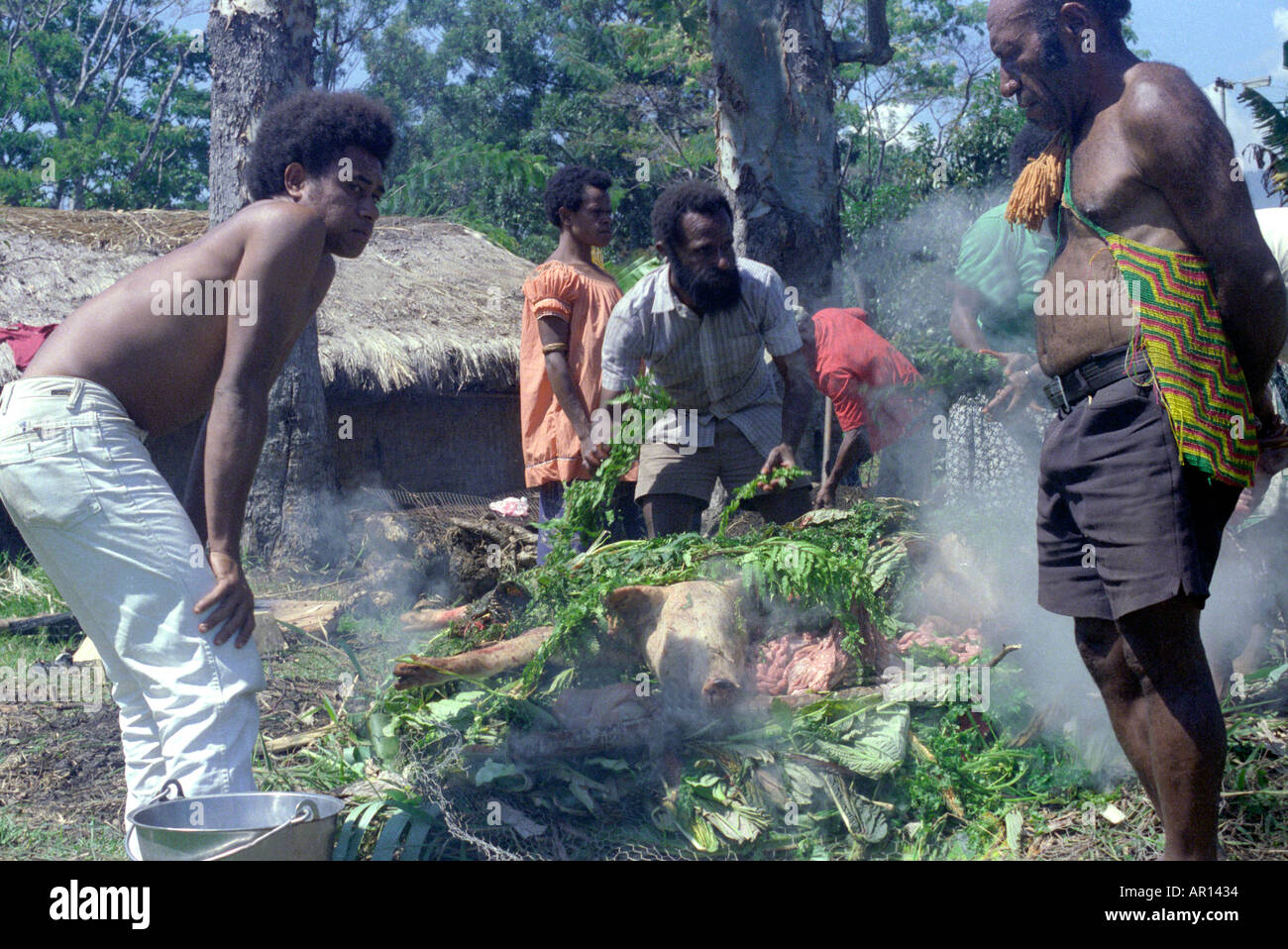 Food Cooked In A Mumu Eastern Highlands Province Papua New Guinea