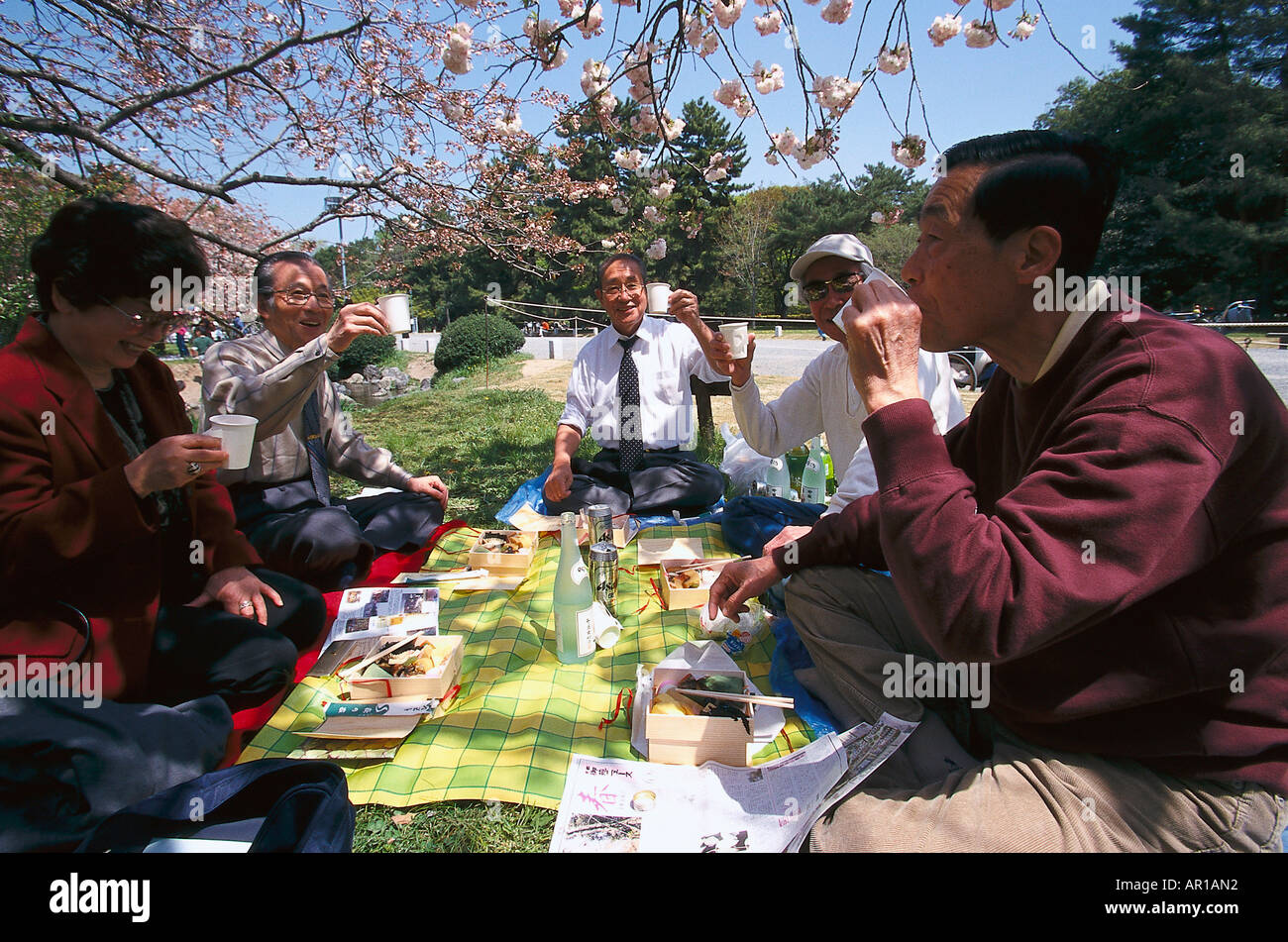 Picnic, Cherry Blossom celebration, Imperial Palace Park, Kyoto, Japan, Asia - Stock Image