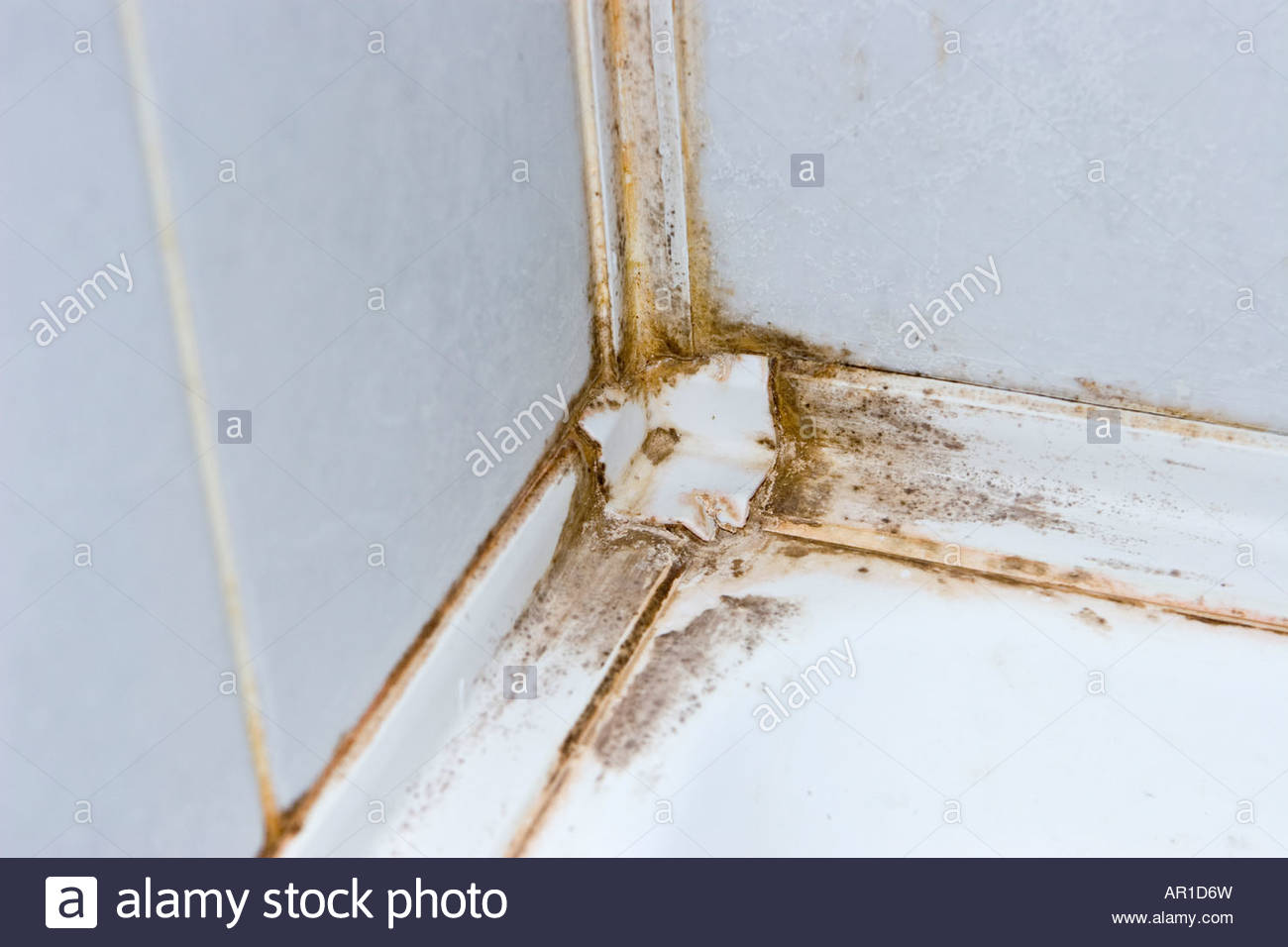 Dirty bath shower seal. - Stock Image