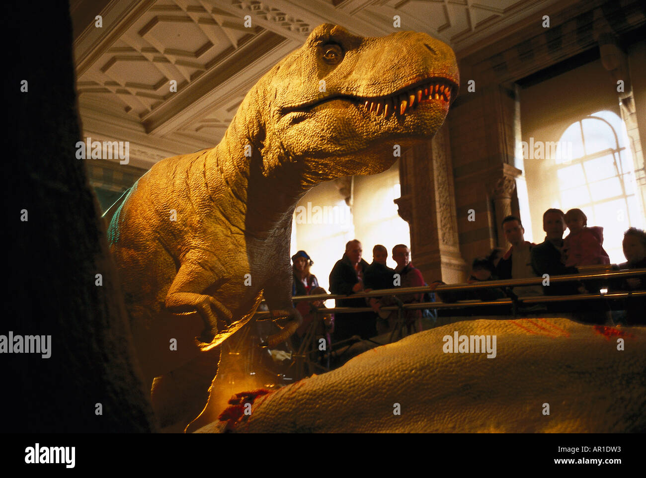 Natural History Museum, Dinosaur Exhibition London, United Kingdom - Stock Image