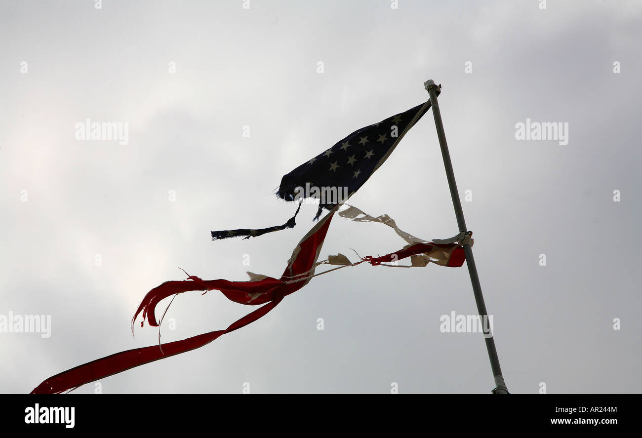 A torn American flag waving in the wind - Stock Image
