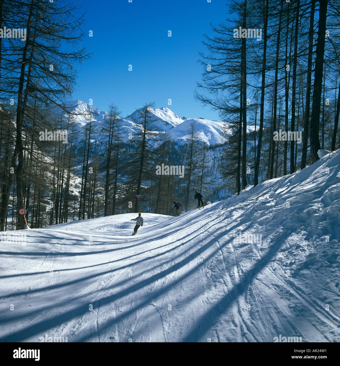 Skiing Le Tours Chamonix France Europe - Stock Image