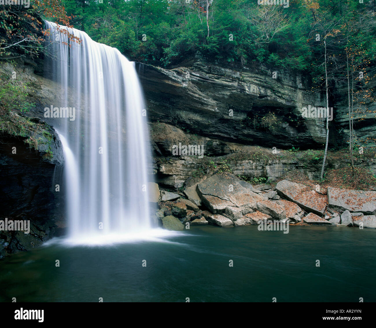 Lower Greeter Falls, Savage Gulf State Natural Area, Tennessee USA - Stock Image