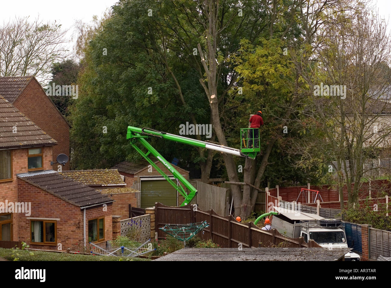 Tree Surgeon safely removing tree from a confined space - Stock Image
