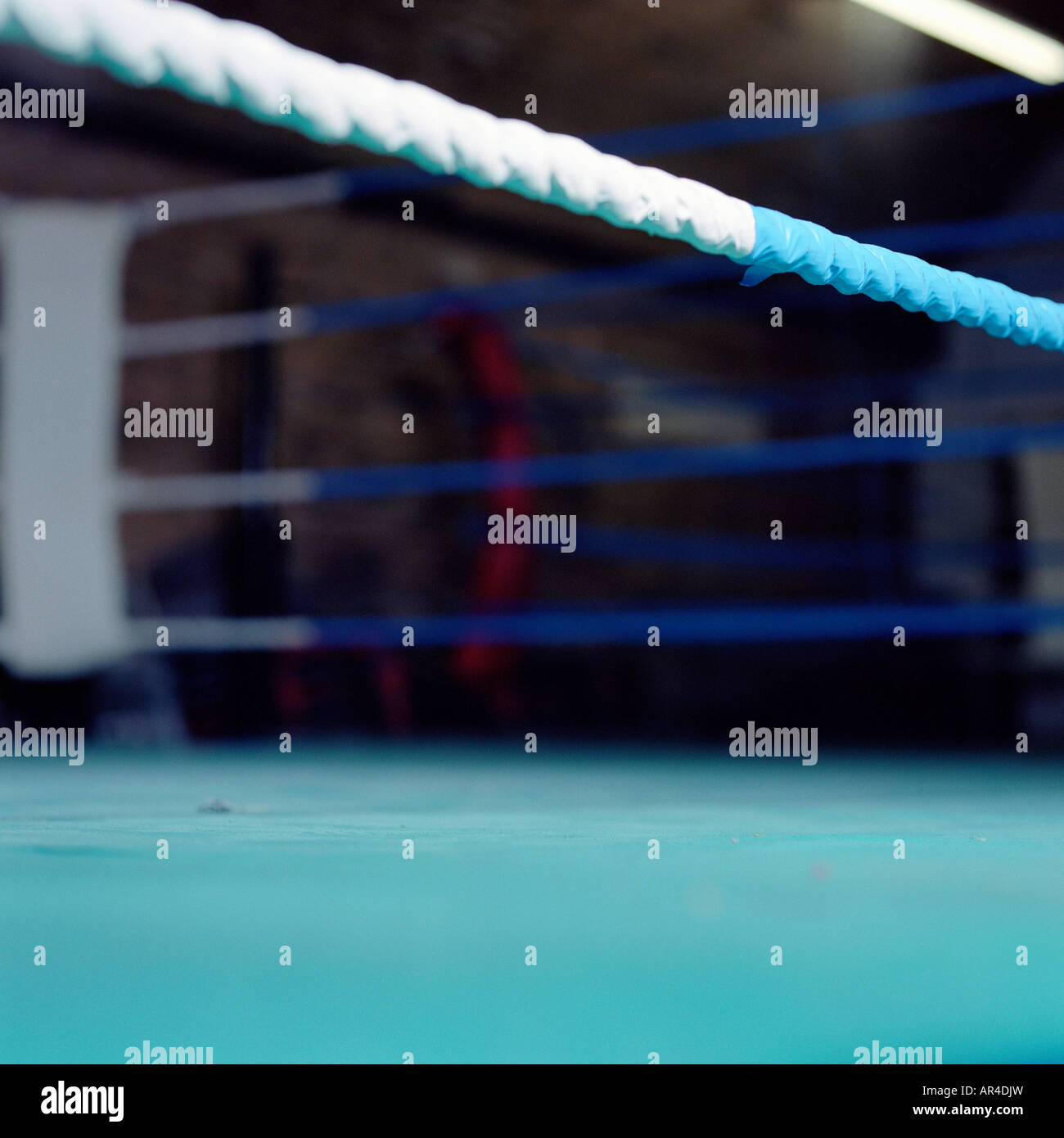 Boxing ring - Stock Image