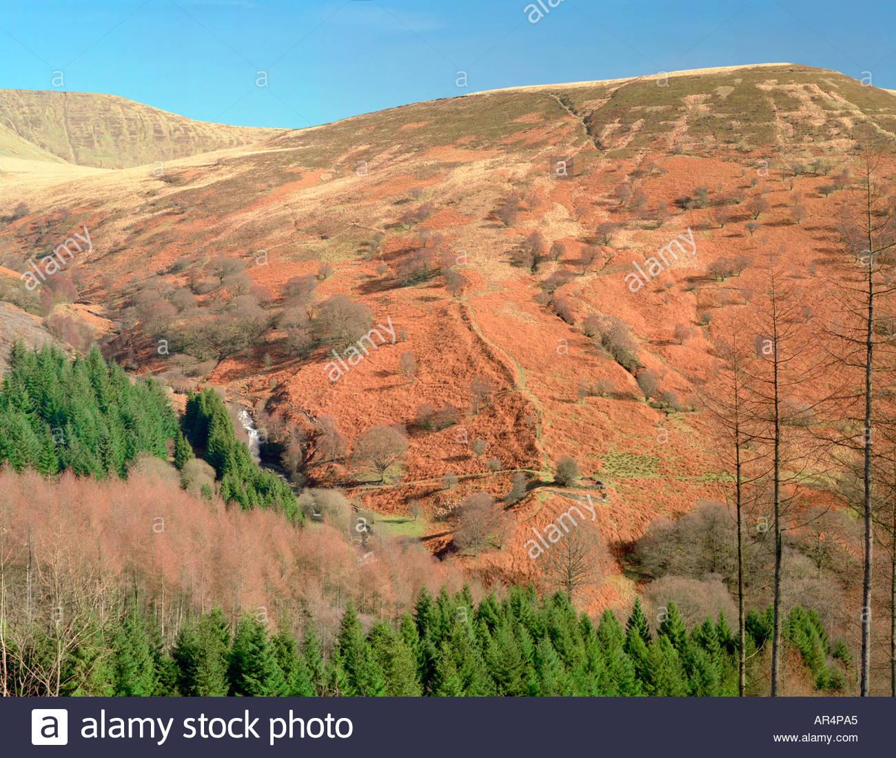 Brecon Beacons at Torpantau Powys Wales UK. - Stock Image