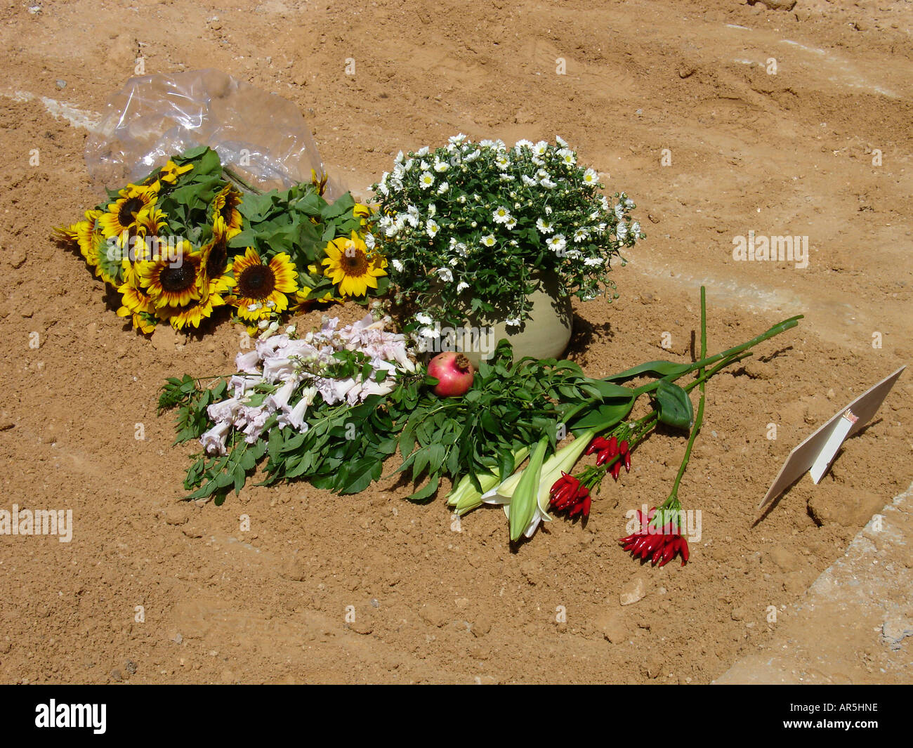 Jewish Burial Site Stock Photos Jewish Burial Site Stock Images