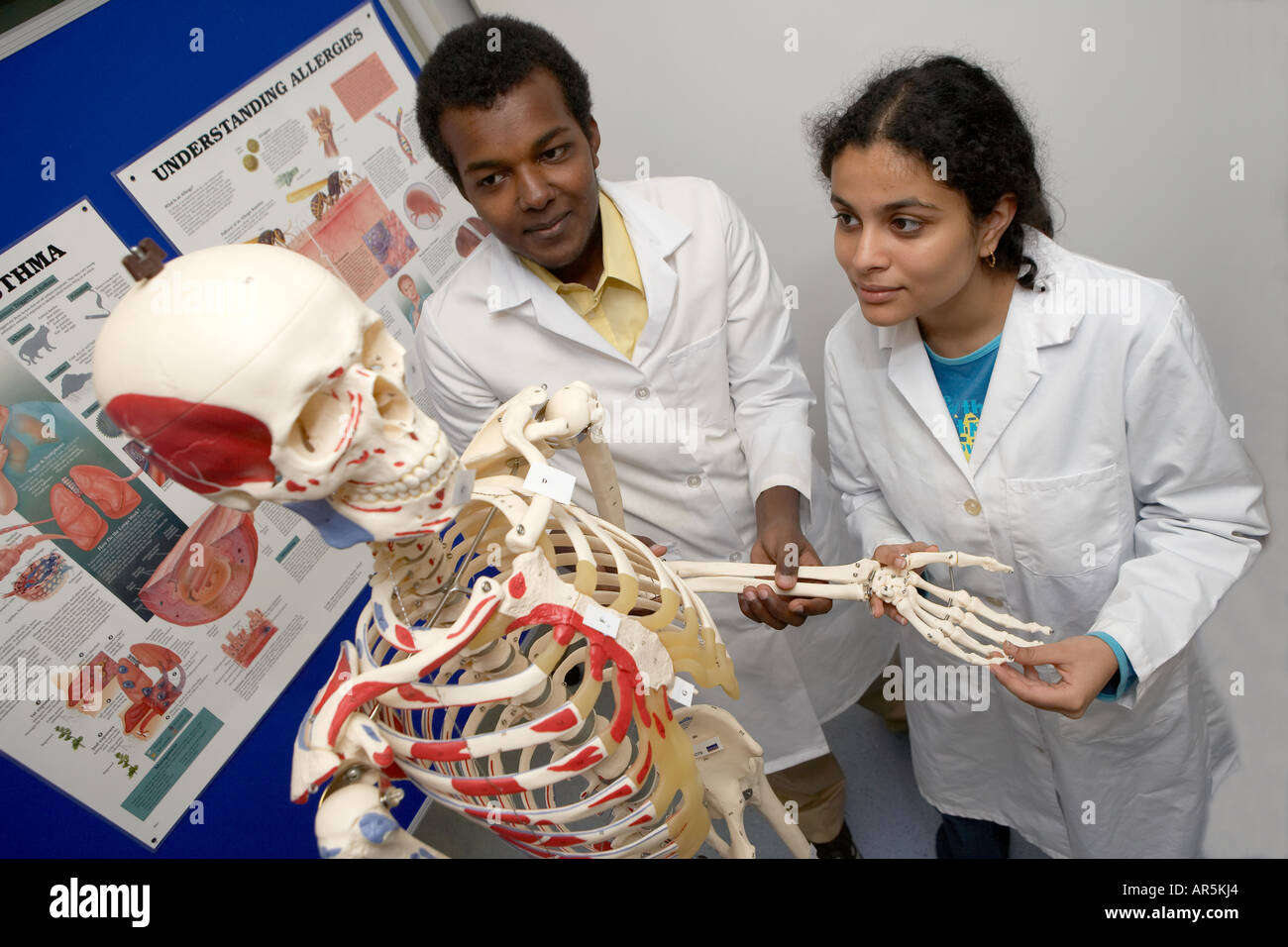 Medical students studying at the Hull and York Medical School HYMS ...