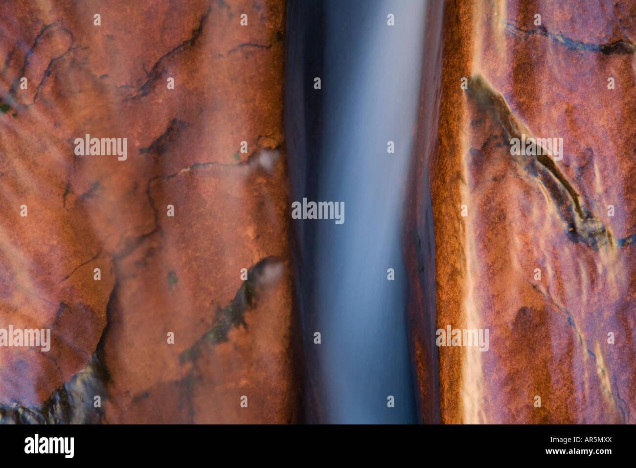 Left Fork of North Creek Zion National Park Utah - Stock Image