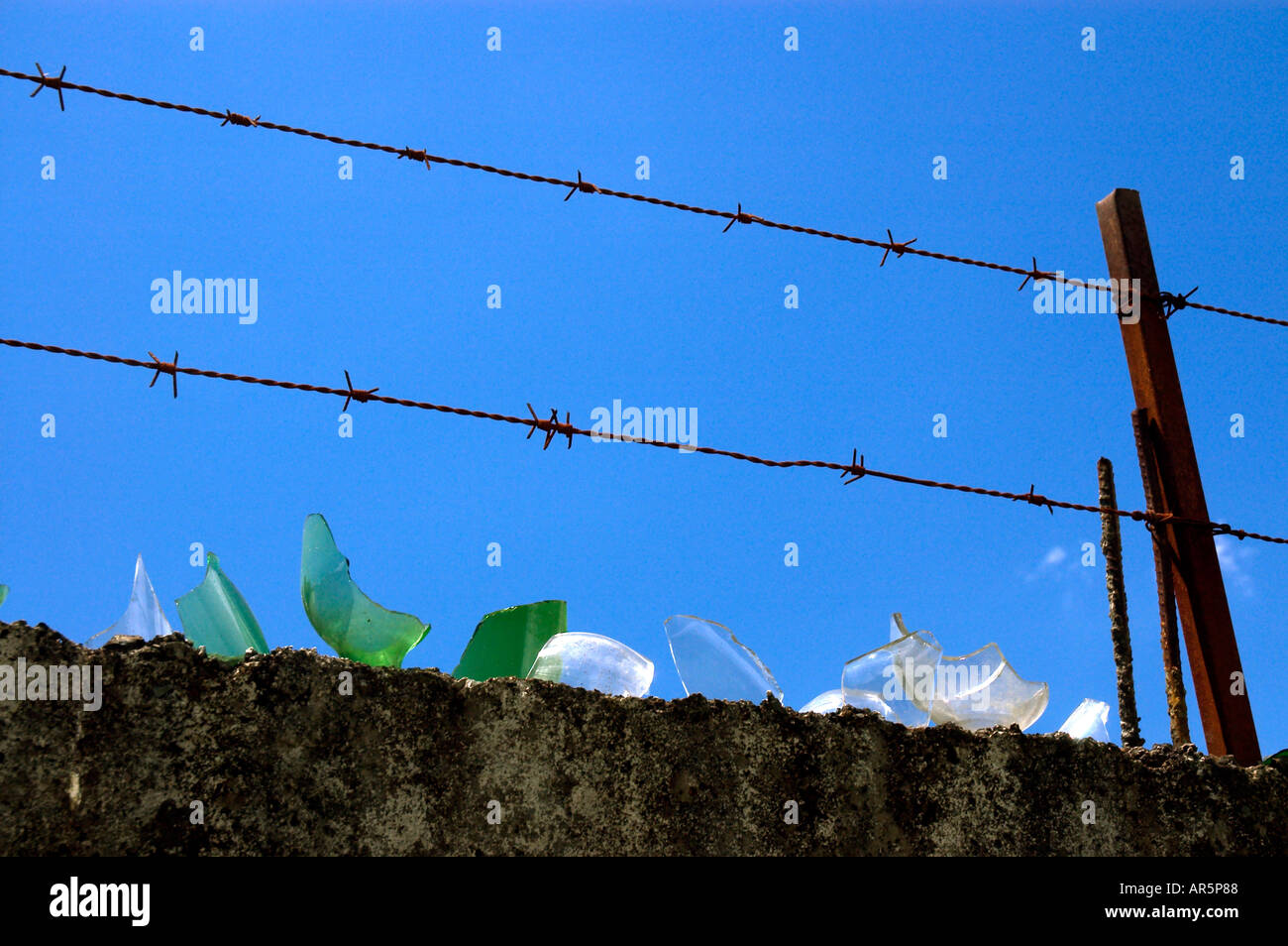 barbed wire and broken glass on security wall Stock Photo: 5206663 ...