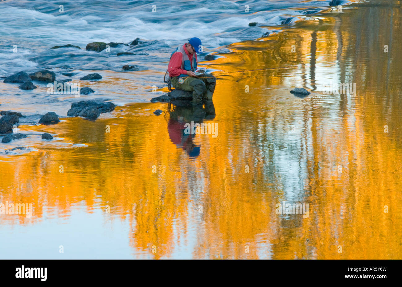 Idaho City of Boise Fly fishernman fishing on the Boise River in the fall - Stock Image