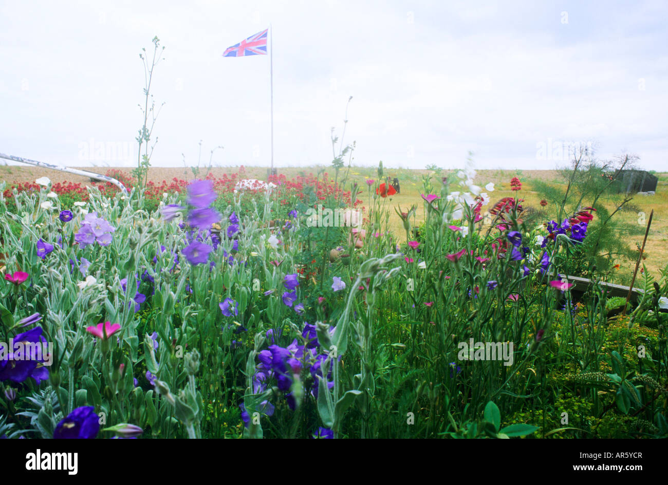 Red White Blue Flowers Flag Stock Photos Red White Blue Flowers