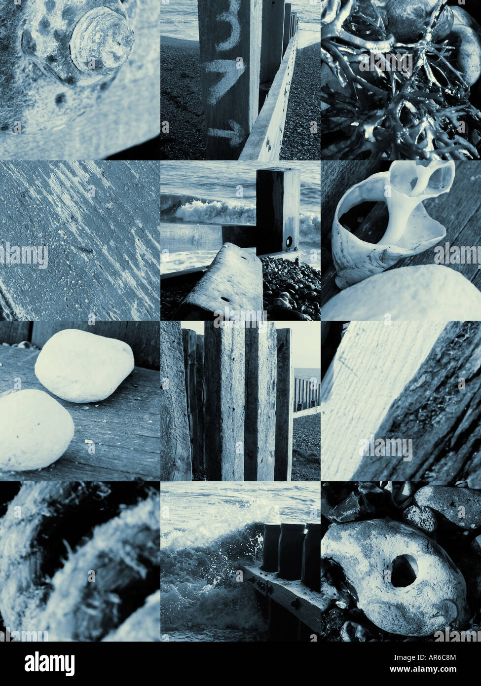 Black and white montage of items found on the seashore Stock Photo