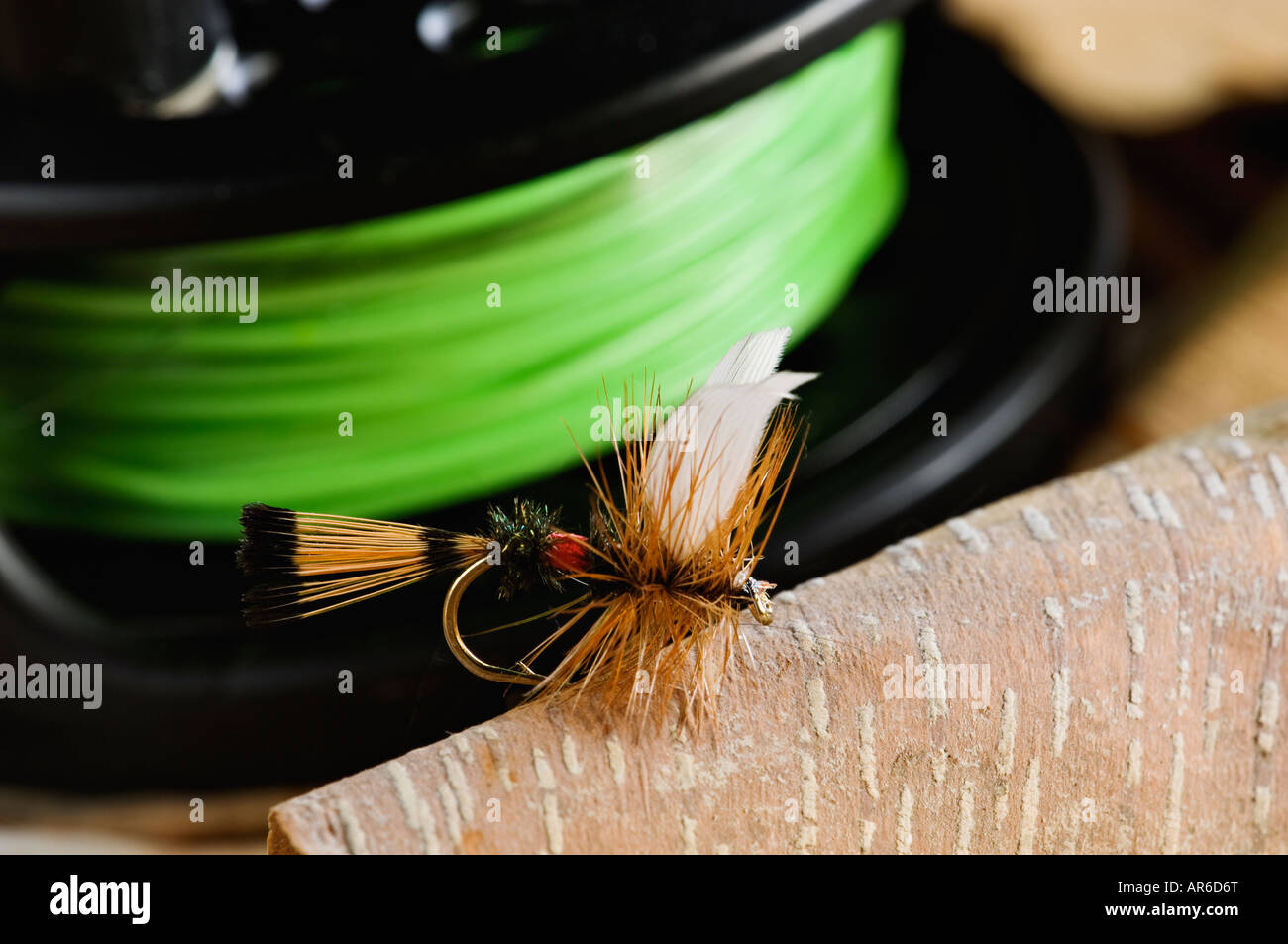 Royal Coachman Dry Fly with Reel and Fly Line Behind - Stock Image