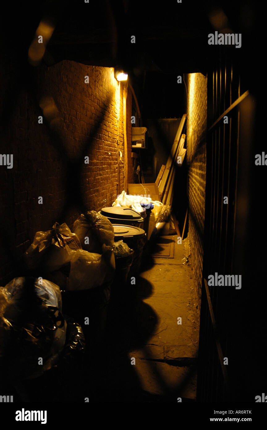 Garbage cans at night in a narrow street East Village New York USA Stock Photo