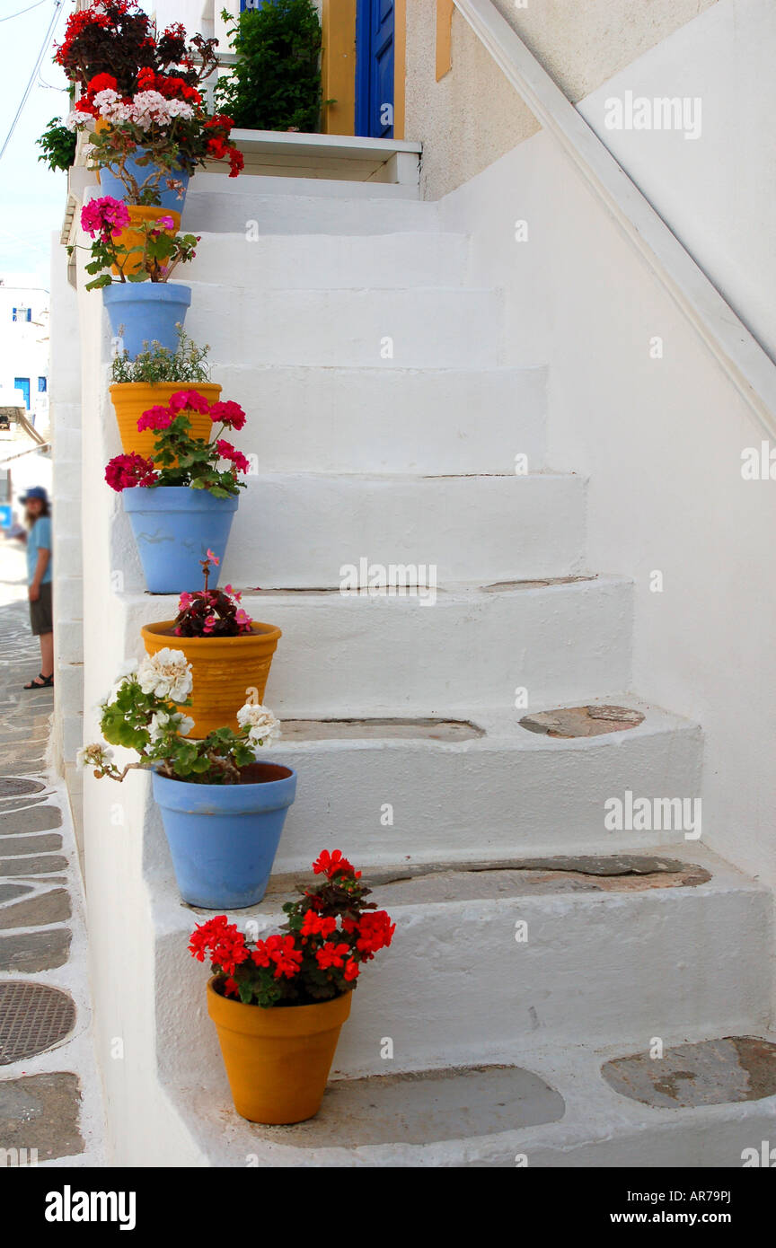 Pretty pots and flowers adorn a staircase in greece stock photo pretty pots and flowers adorn a staircase in greece mightylinksfo