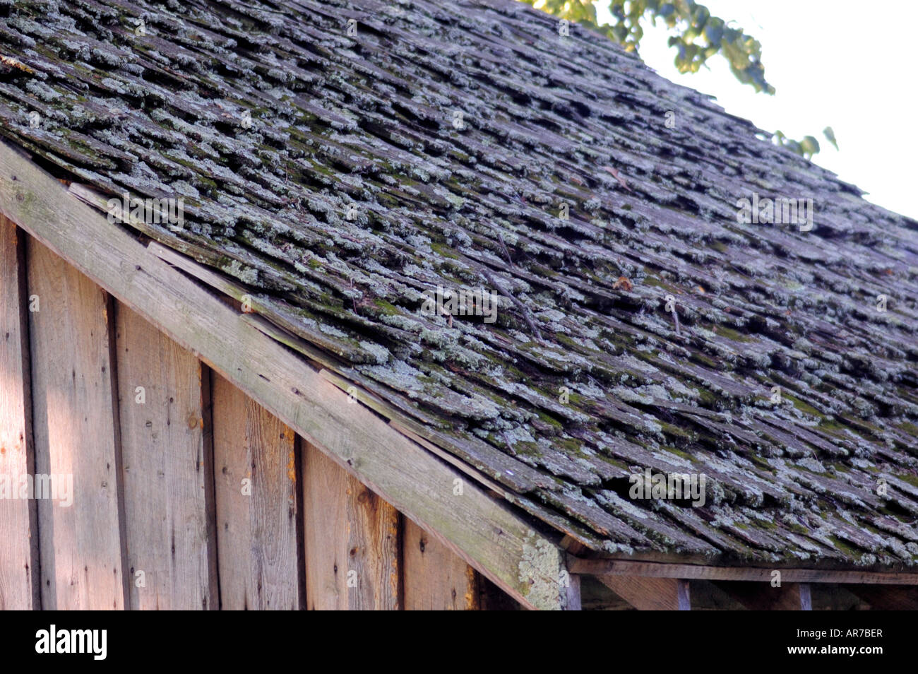 Wooden shakes on the roof of a pioneer log cabin in kentucky usa wooden shakes on the roof of a pioneer log cabin in kentucky usa publicscrutiny Image collections
