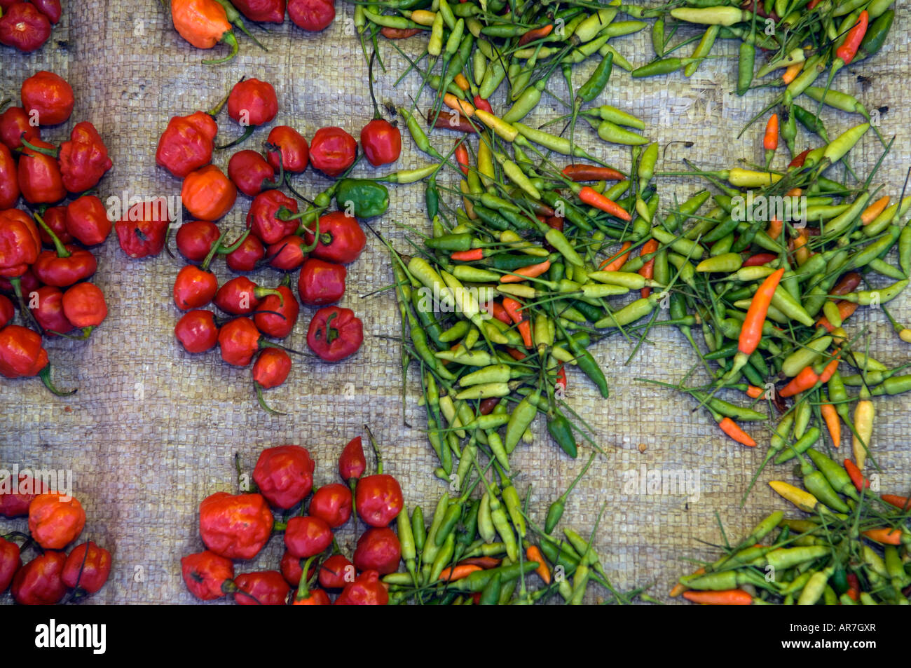 pepper and chilli for sale at the market, Hell-Ville, Nosy Be, Madagascar - Stock Image