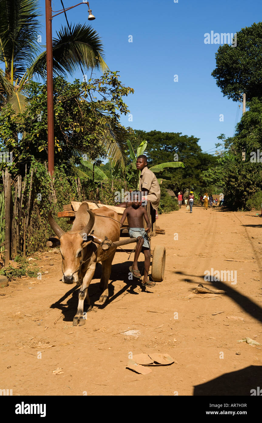 ox cart, Hell-Ville, Nosy Be, Madagascar - Stock Image