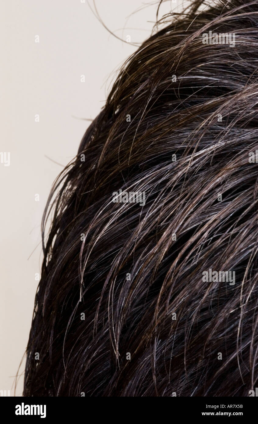 Close up of a mans hair - Stock Image