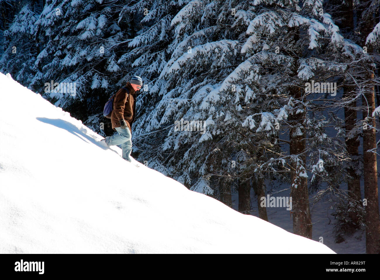 walking down a snowcovered hill Steinbachtal near Lenggries Bavaria Germany Europe - Stock Image