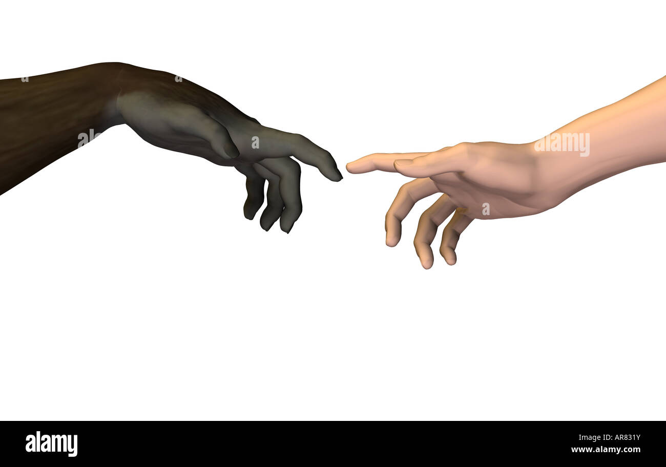 ape human hand - Stock Image