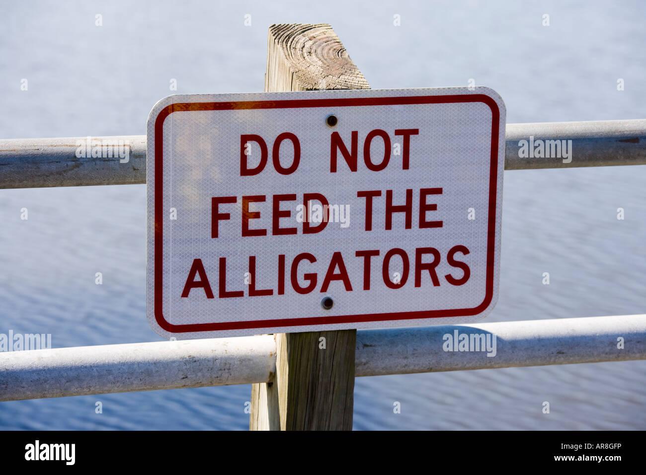 Sign do not feed the alligators. Georgetown Marina South Carolina USA - Stock Image