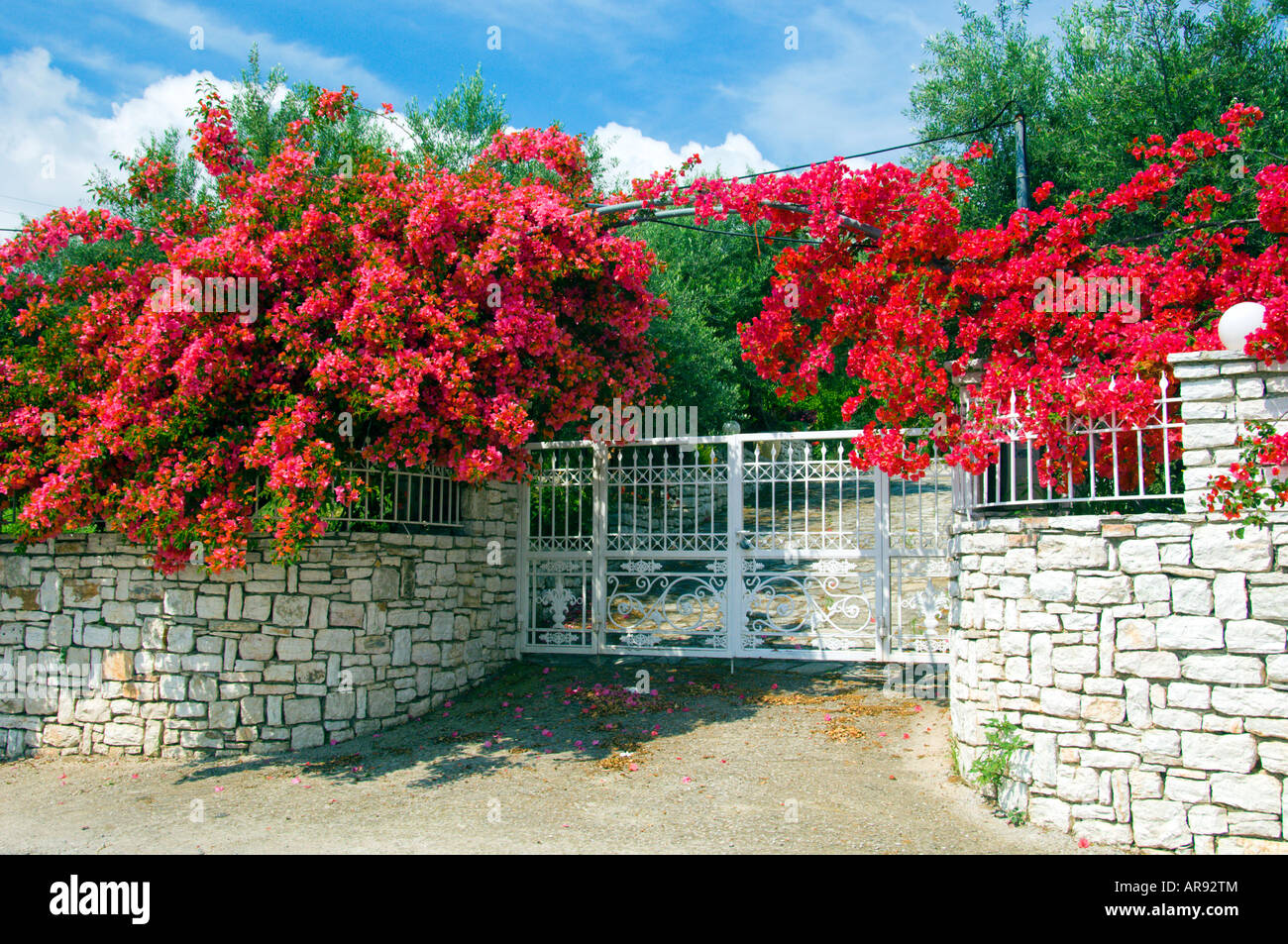 An entrance gate to an estate with bougainvillea flowers in Messinia Peloponesse Greece - Stock Image