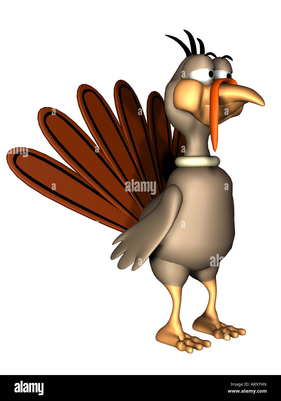 turkey - Stock Image