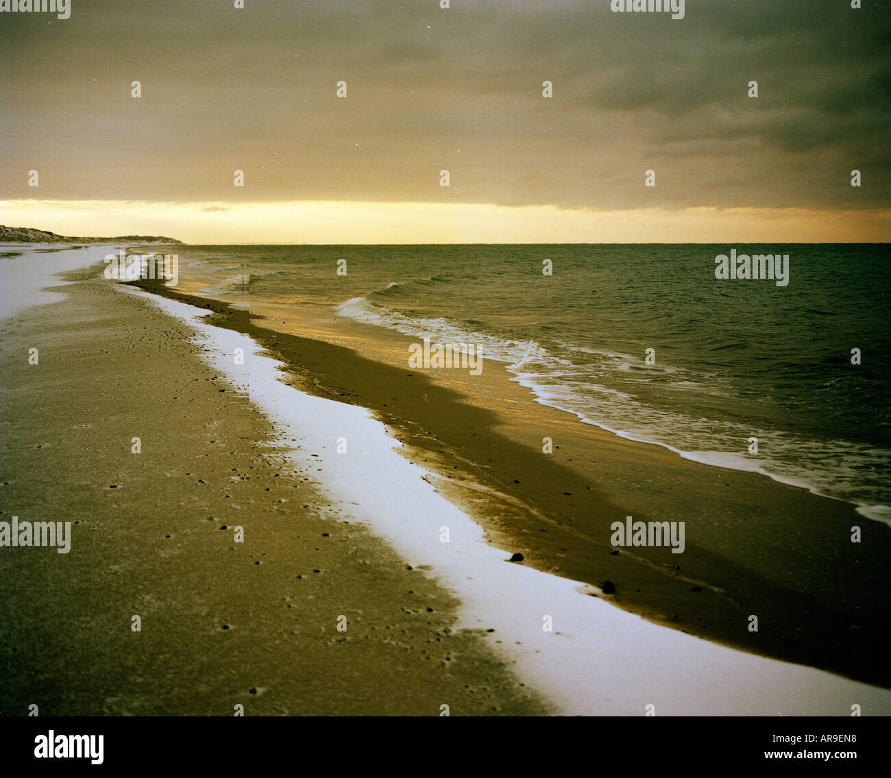 snowy beach on the southeast cost of Sealand Denmark - Stock Image