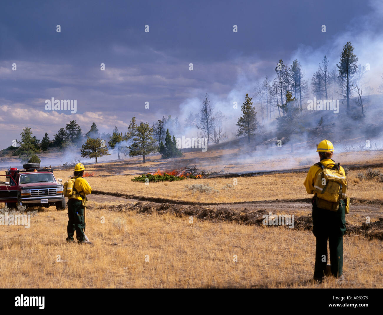 Fire Fighters in line, fighting wildfire, Big Timber, Montana, USA - Stock Image