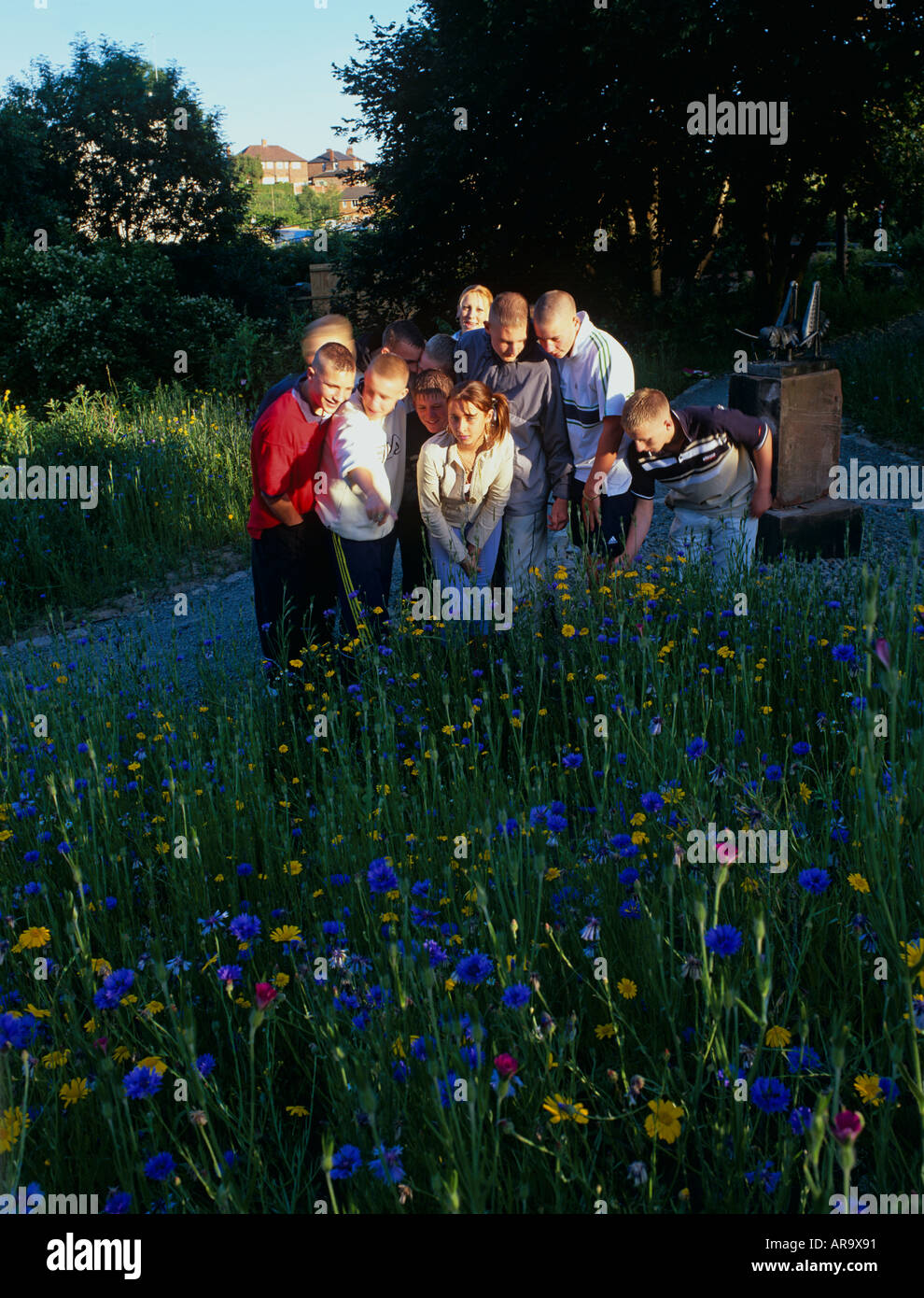 Teenagers in newly sown wildflower meadow, inner city Manchester Stock Photo