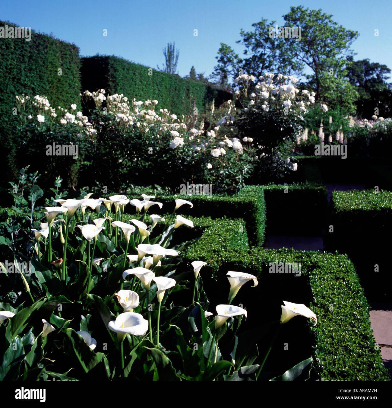 Weißer Garten Sissinghurst sissinghurst place weißer garten stock photo 15994132 alamy